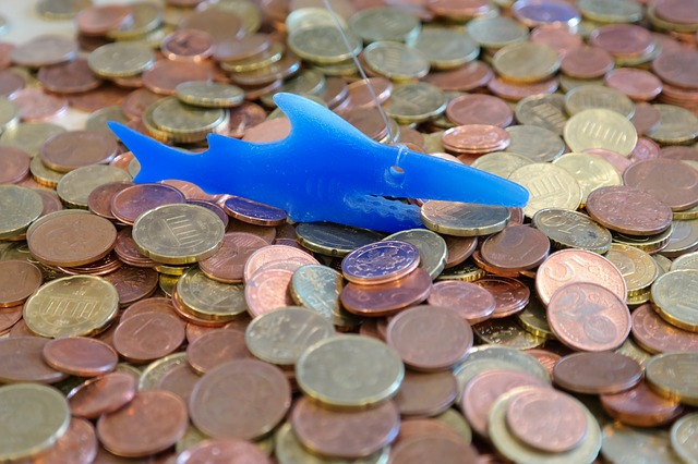 money-shark-232034_640