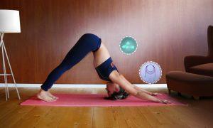 Ejercicio en casa: todo lo que puedes hacer sin ir al gimnasio
