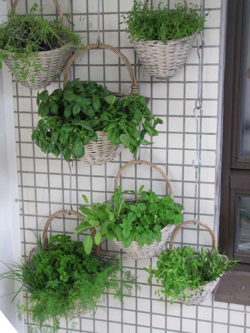 Jardines originales para pisos peque os yaencontre for Jardines originales