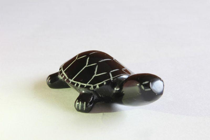 Decoración de tortuga en casa