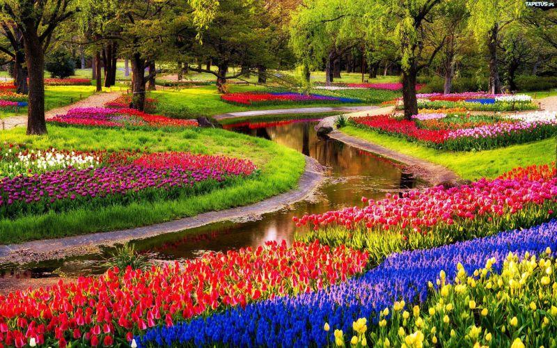 Los 15 jardines m s bellos del mundo yaencontre for Jardines bellos fotos