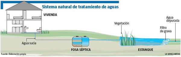 Sistema natural de tratamiento de aguas