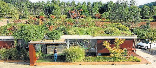 Ventajas de vivir bajo un jard n yaencontre - Cubiertas vegetales para tejados ...